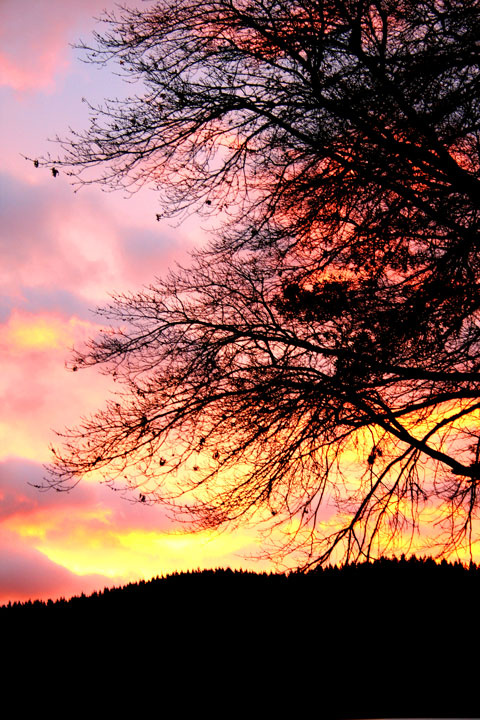 AE-sunset