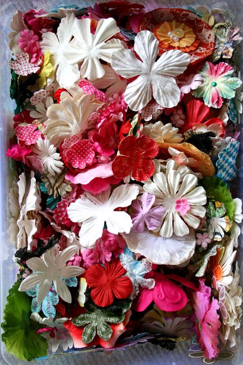 Prima-flowers