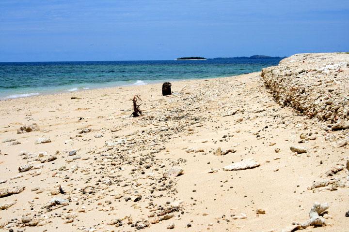 Finding-Nemo-beach
