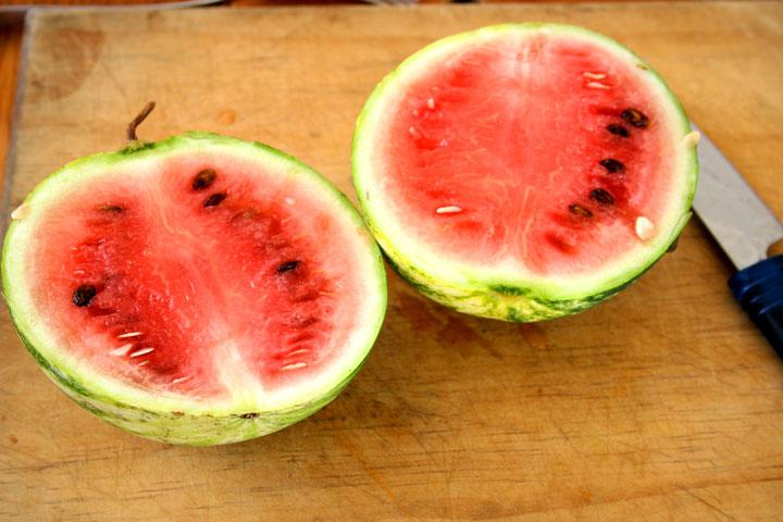 Sarah's-watermelon