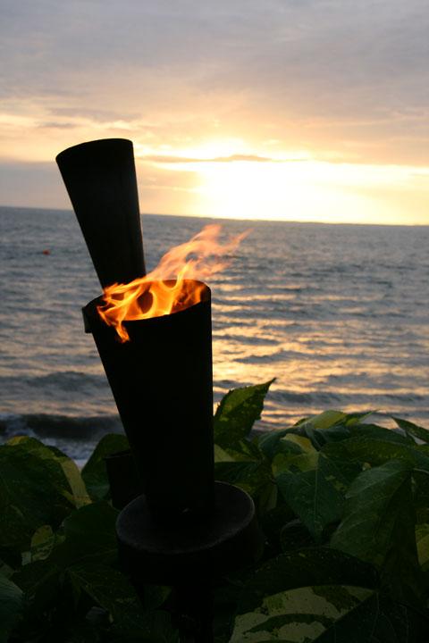 Fiji-fires