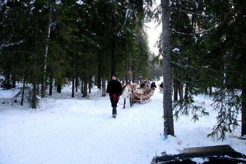 RD2-Reindeer-ride-1