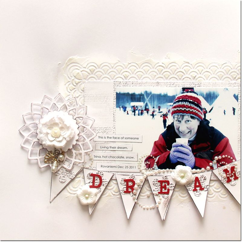 Dream-DS