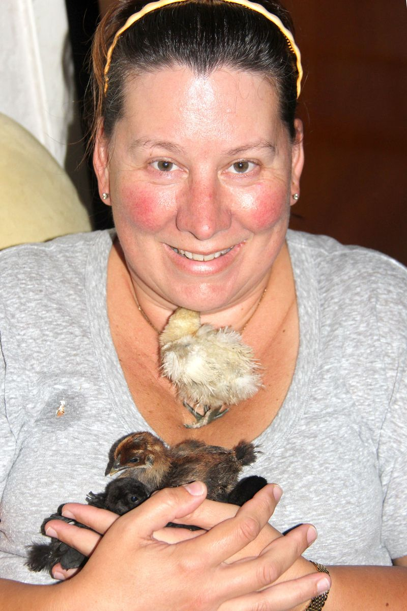 Frizzle-chicks-2