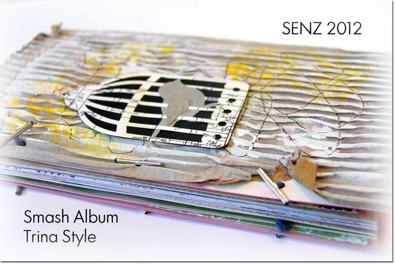 Smash-album-ds