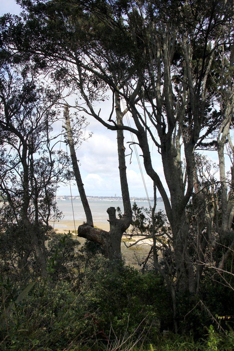 Tree-gap