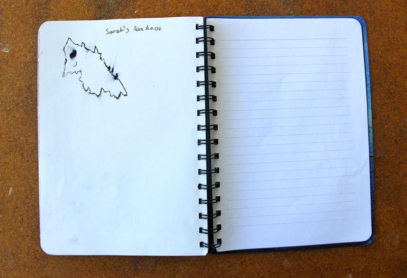 Sarahs-drawing