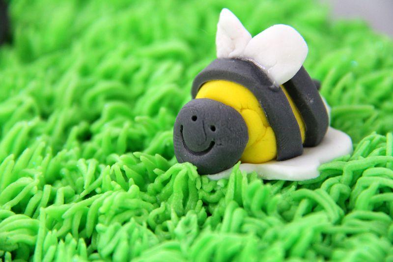 Grass-cake-4