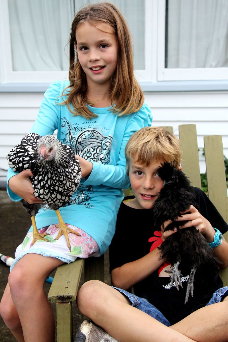 Kids-with-chickens