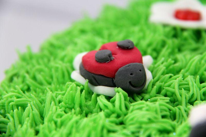 Grass-cake-2