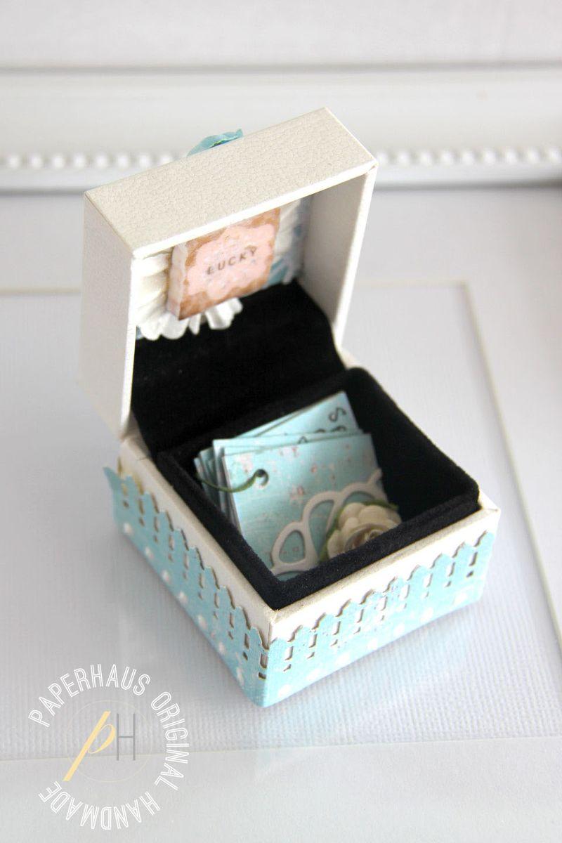 Altered-pandora-box-inside