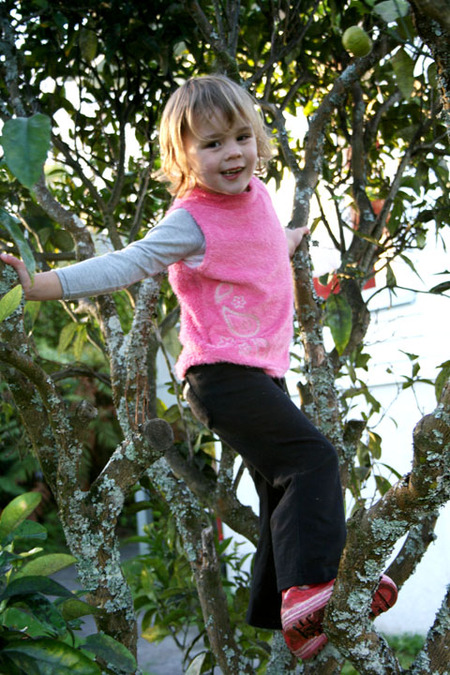 Sarah_climbing_our_orange_tree_72dp