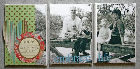 3_set_canvas_family_72dpi