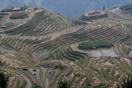 China_long_ji_terraces_72dpi_2