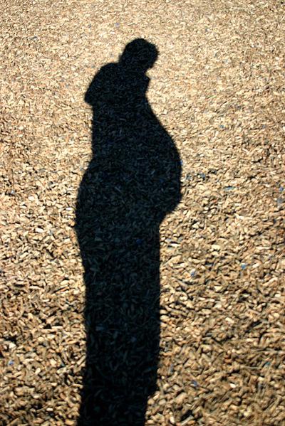 Trinas_silhouette_72dpi