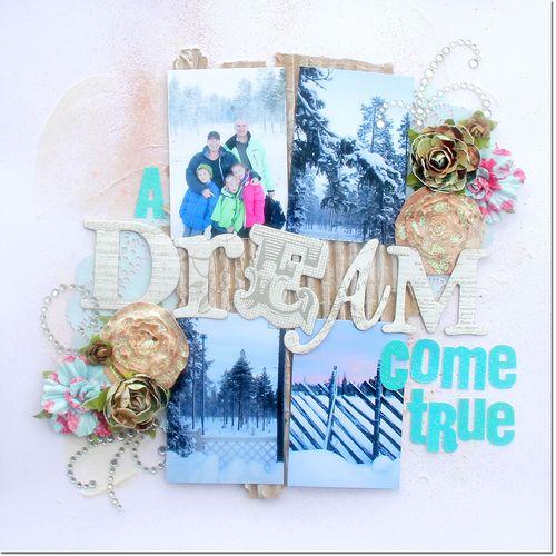 Dream-come-true-DS